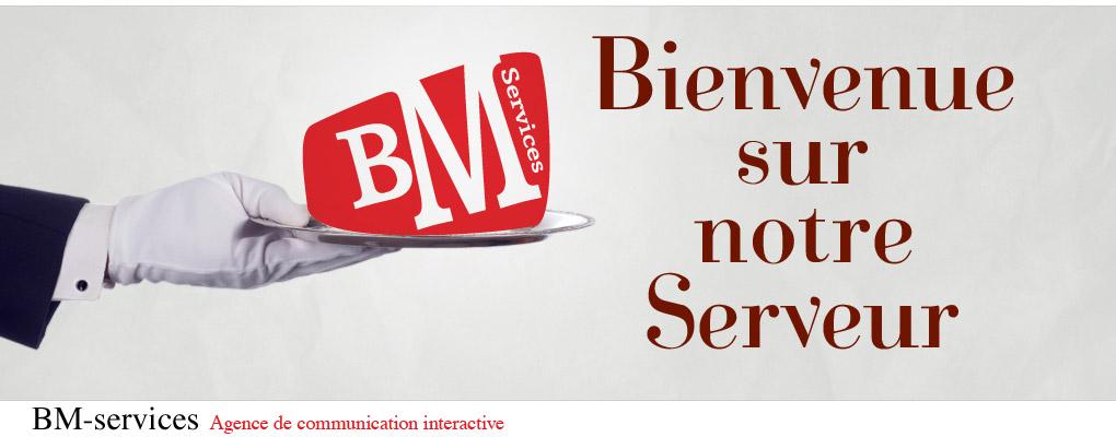Bienvenue sur notre Serveur -- BM-Services